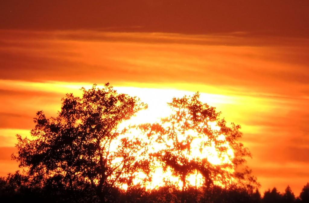 Abtsee Sonnenuntergang 5