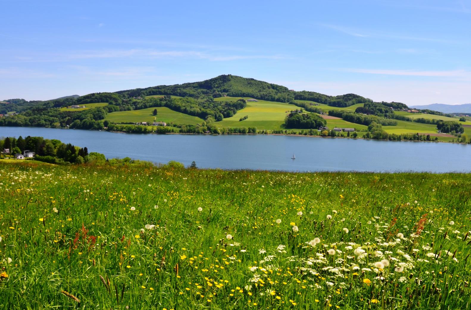 Bio-Heu-Region Trumer Seenland