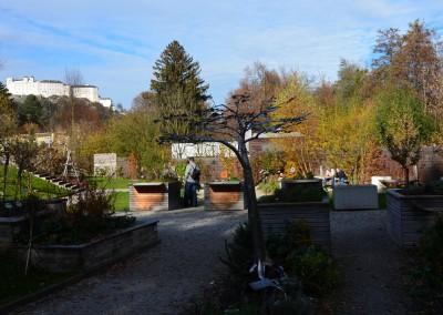 Bio-Heu-Region, ORF Fernsehgarten 41