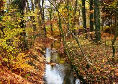 Bio-Heu-Region, ORF Fernsehgarten 63