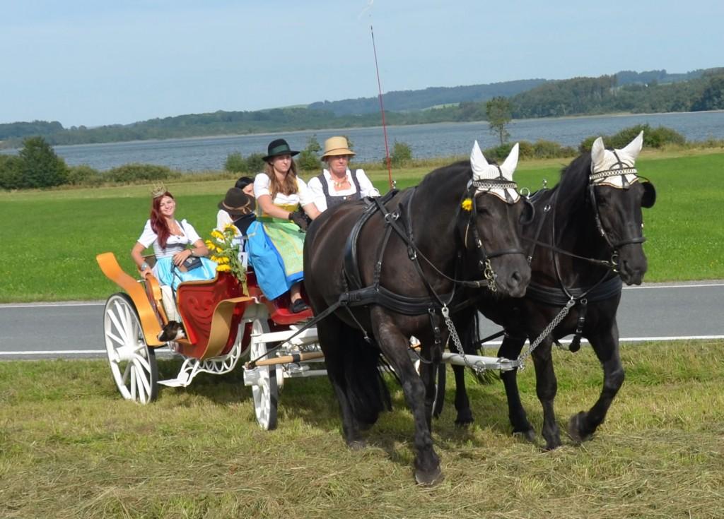 Pferdekutschengala 12